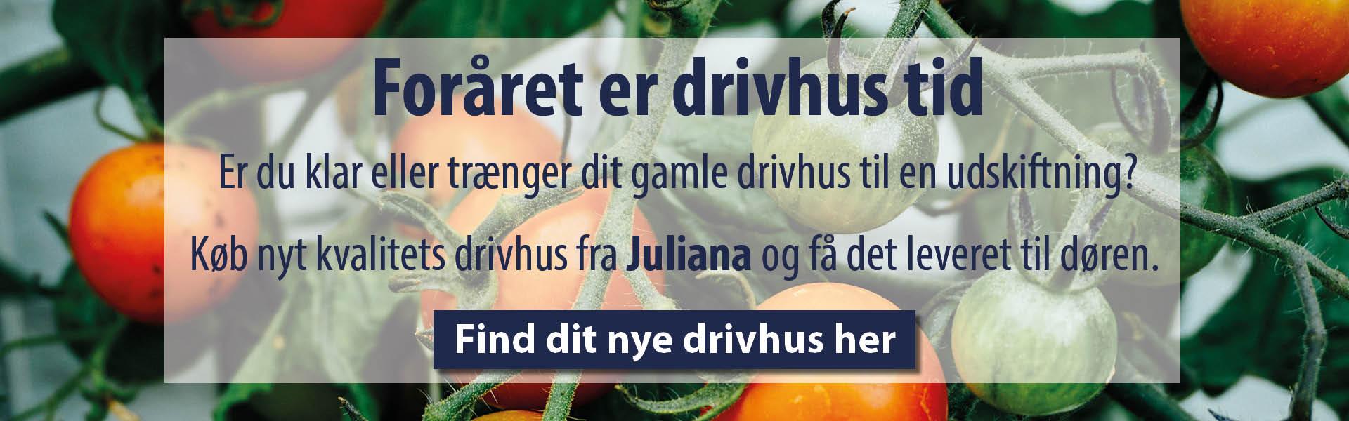 Juliana_Drivhus_Netbyggemarked